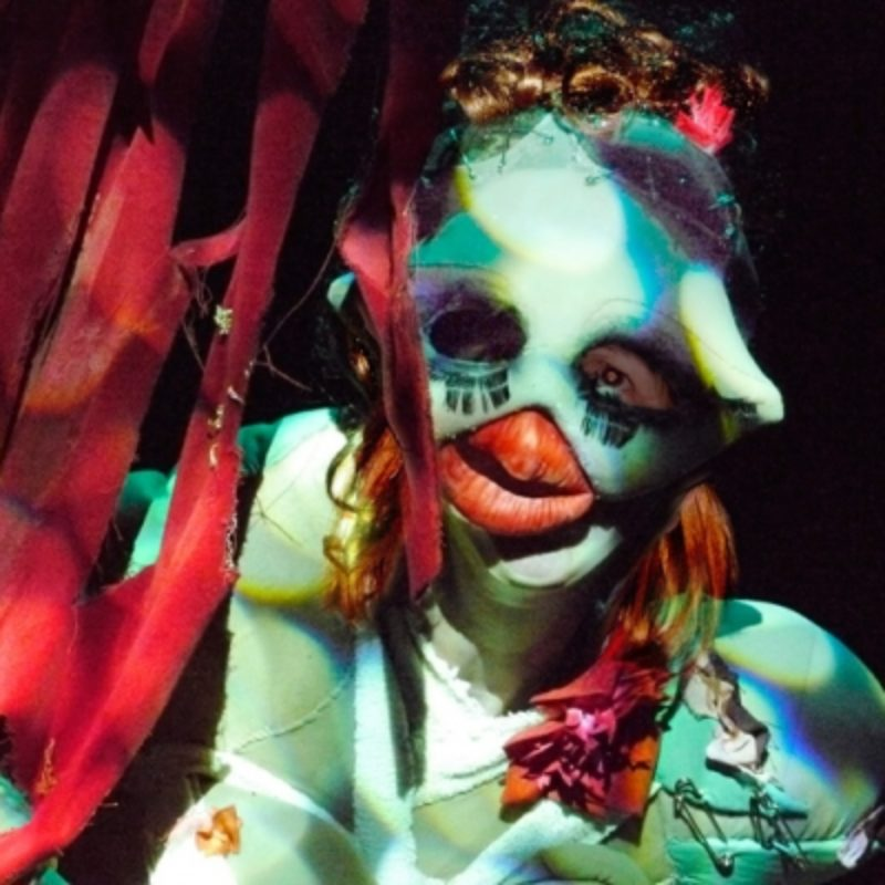 A close up shot of woman in a burlesque costume wearing a mask.  It has large eyes with painted on eyelashes and hugely inflated red lips.