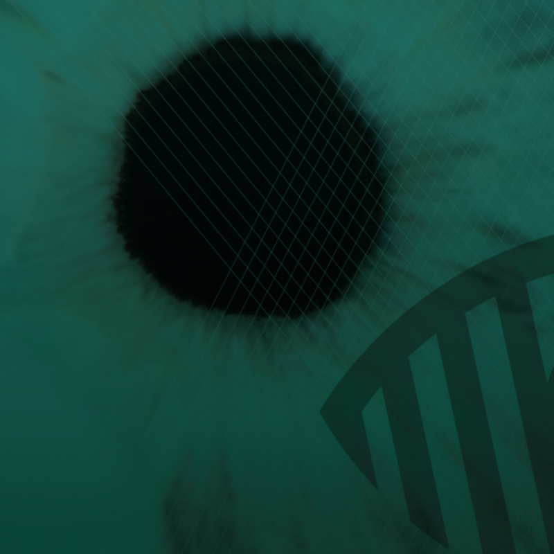 A zoomed in image of an eye, showing the black of the pupil and the surrounding tissue. The image is washed with an eerie deep green.