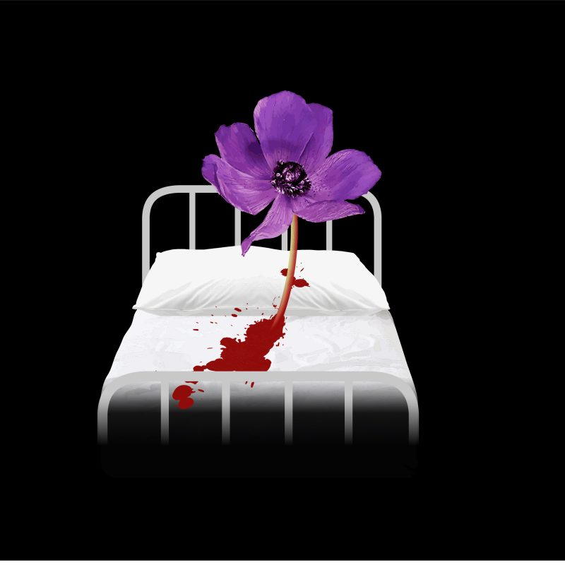 A purple flower growing out of a white hospital bed, a splatter of red blood on its sheets. The background of the image is all black.
